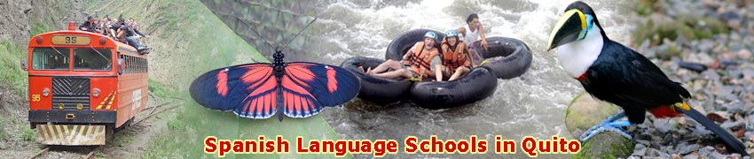 Study Spanish in Quito, Galapagos Spanish School, Spanish School Quito, Quito Spanish School, Spanish Quito, School Quito, Spanish School, Spanish School Galapagos, Quito Spanish, Galapagos Spanish, Ecuador Spanish, Spanish, education, learning spanish, spanish language school in mexico, study abroad, education, Ecuador, Quito, Spanish school quito, Spanish language schools, Spanish Institute of Galapagos, Galapagos, learn Spanish, Language School, learn, homestay, Espanol, learning abroad, Spanish classes quito, language courses, study abroad, learn Spanish quito, learning spanish, language school, spanish language school, spanish schools in quito, otavalo spanish schools, baños, mindo, cuenca, vilcabamba, ruta del sol, isla de la plata, spanish schools, ecuador spanish, quito spanish, galapagos spanish, spanish schools in ruta del sol, schools, Montanita schools, manta spanish schools, mindo spanish school, montanita, ruta del sol, schools spanish, spanish, spanish schools in Ecuador, school, surfing and spanish, beach & spanish, spanish schools in Ecuador, spanish school in cuyabeno, amazon spanish, spanish school in amazon, speaking spanish, study abroad program, learn to speak spanish, spanish school, spanish language course, studying abroad, spanish class quito, student travel, total immersion, language immersion program, spanish immersion program, spanish immersion